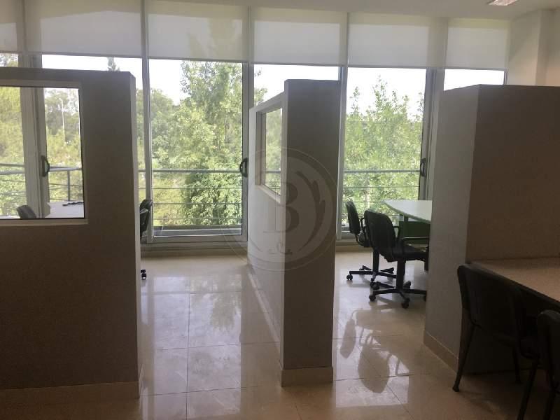 alquiler-anual-oficina-oficinas-en-office-quatro-pilar-pilar-81656